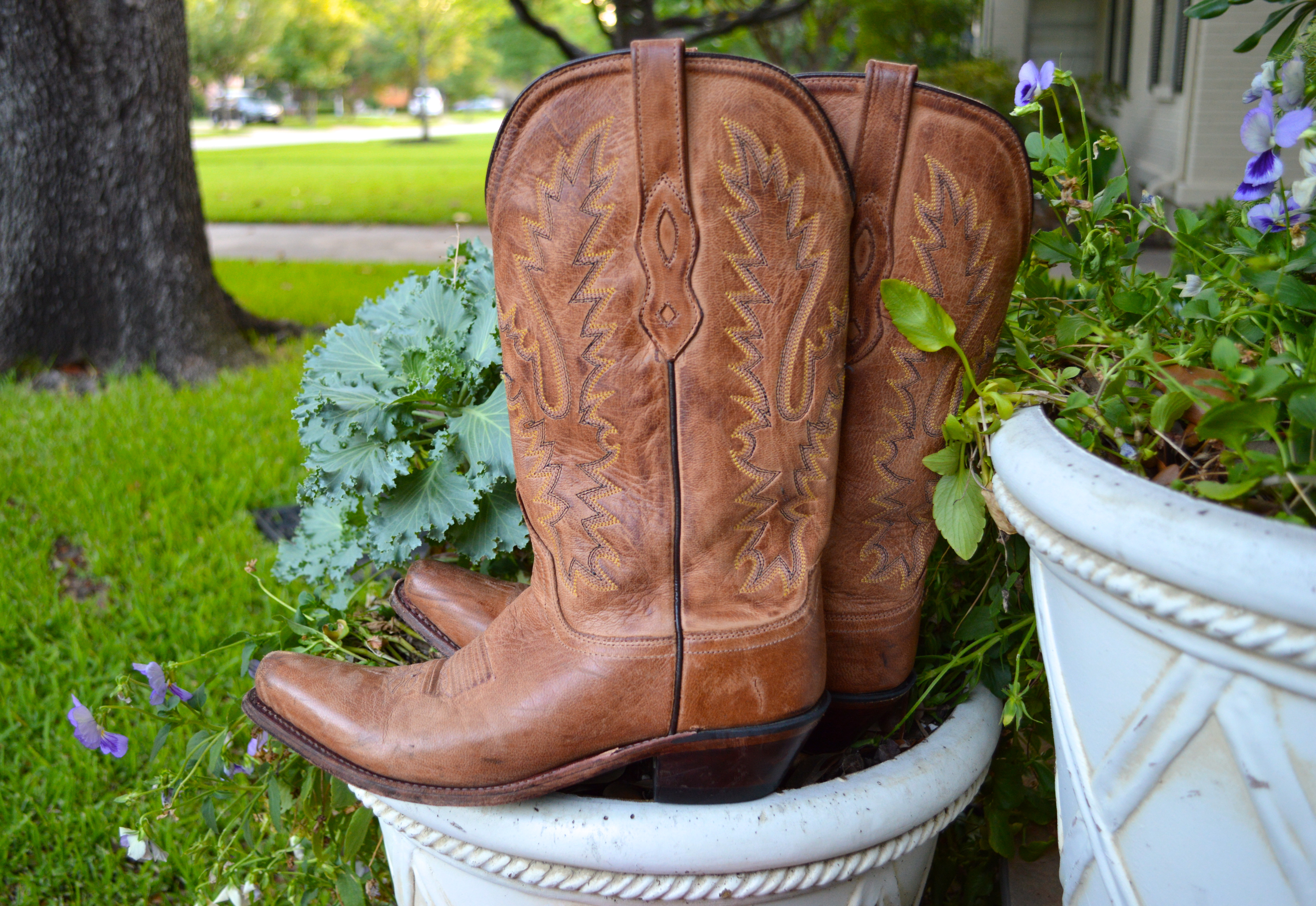 Lucchese Southern Cowboy Boots Preppy Style