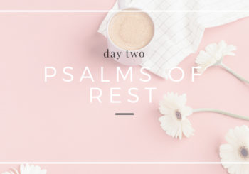 psalms of rest // video replays