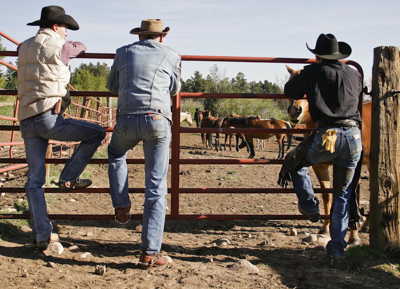 Cowboy Take Me Away A Lonestar State Of Southern